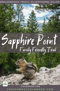Sapphire Point is Views, Trails & Chipmunks Adventure Time Art, Family Adventure, Adventure Travel, Adventure Quotes Outdoor, Travel Usa, Canada Travel, Travel Tips, Snowboard, Mtb