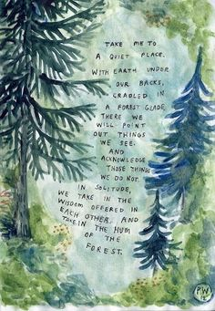 colorado pine trees forest quote reminds me of home