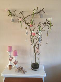 Magnolia tak met verse tulpen