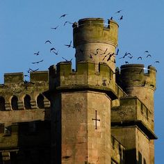 Lowther Castle Gardens are rich in wildlife
