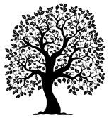 tree outline : Tree shaped silhouette 3 - vector illustration.
