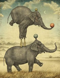 """Julian De Narvaez is a freelance illustrator from Bogotá, Colombia. """"Julian De Narvaez begins his drawings in pen and China ink, gradually assembling and colouring… Art And Illustration, Elephant Illustration, Illustrations, Image Elephant, Elephant Love, Elephant Art, Circus Poster, Circus Art, Circus Theme"""