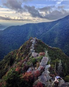 412 best great smoky mountains national park images in 2019 great rh pinterest com