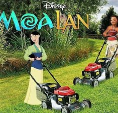 Link's Lawn Services has competition now.