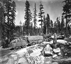 Wagons struggle to cross Donner Summit in 1860s