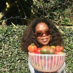 #Oprah farm fresh tomatoes in #Hawaii