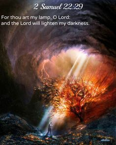 2 Samuel 22:29 O Lord, you are my lamp.      The Lord lights up my darkness.  30 In your strength I can crush an army;      with my God I can scale any wall.