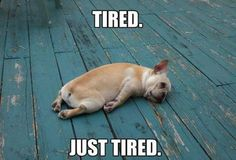 soo tired! - Angela Wells this is exactly how I feel right now!