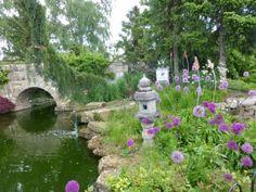 June 2015 in the Show Gardens | Walkers Nurseries