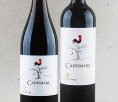 Um terroir para velhas uvas: Cantoalba Carménère e Pinot Noir #vinho #carmenere #pinotnoir #vinhochileno #desconto