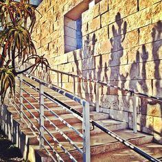 "@fijifiji: ""Cacti shaddies. #gettymuseum #losangeles"" (Taken with instagram)"