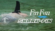 Fin Fun Shark Fin Shop For Mermaid Tails And Shark Fins
