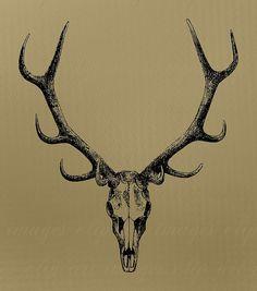 Skull Clip Art, with antlers, Royalty Free, No Credit Required Deer Skull Art, Deer Skull Tattoos, Hunting Tattoos, Deer Skulls, Animal Skulls, Antler Tattoos, Stag Tattoo, Tatoo Art, Future Tattoos