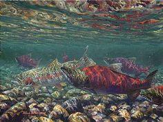 Rainbow trout & sockeye salmon - Painting Art by Mark Susinno - Nature Art & Wildlife Art - Underwater Game Fish Art & Fly Fishing Scenes - Susinno Art Salmon Run, Sockeye Salmon, Rainbow Trout, Fish Art, Wildlife Art, Fly Fishing, Native American, Painting Art, Alaska