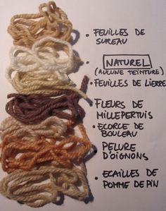 Teintures naturelles: on peut le faire soi-même