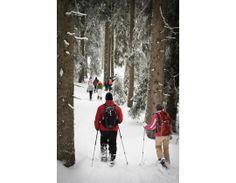#Schneeschuhwandern im #Schwarzwald