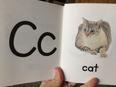 News with Naylor's: Letter C: Alphabet, Songs, Books, Handprint Art (Day 1)