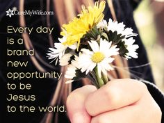 Every day is a brand new day. Cure My Wife.com is a Christian support network for women suffering with chronic illness and pain.