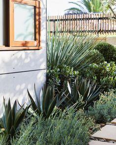 Landscape Architecture, Landscape Design, Garden Design, Architecture Design, Backyard Furniture, Backyard Patio, Garden Steps, Outside Living, Dream Garden