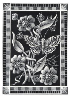 Cynthia Emerlye, Vermont artist and kirigami papercutter: Butterfly Scratchboard Etching - final step