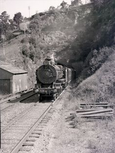 Steam locomotive [Blue Mountains, NSW, n. Blue Mountains Australia, Steam Engine, Steam Locomotive, Historical Society, South Wales, Great Pictures, Train Station, Newcastle, Purpose