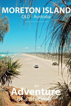 Things to do at Moreton Island, QLD, Australia | Adventure Activities that includes snorkeling amongst shipwrecks, kayaking, sand tobogganing and more!  Click to read about our fun 2 day tour!