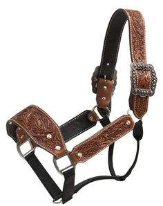 Showman Argentina Cow Leather Belt Style Halter With Full Floral Tool Equestrian Outfits, Equestrian Style, Equestrian Problems, Equestrian Fashion, Leather Tooling, Cow Leather, Bronc Halter, Westerns, Barrel Racing Tack