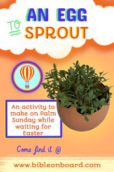 make this on Palm Sunday and watch your eggs sprouts until Easter! Palm Sunday, Bible Crafts, Sprouts, Eggs, Easter, Activities, Watch, Board, How To Make