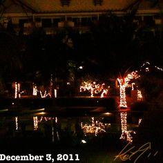 Christmas lightsなコンド6 #philippines #christmas