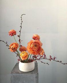 palette shift. . bowl by @dceramics . . . #wildgreenyonder #ranunculus #ikebana #floraldesign #orange #peach #dsfloral #ceramics #orchids #florist #vaflorist #virginiaflorist #vaflowers #virginiaflowers #minimal #flowers #shopsmall
