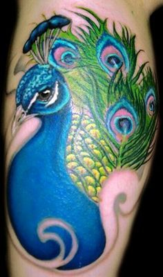 Peacock tattoo. Vibrancy. True to life. Angle/positioning. Odd swirls a no.