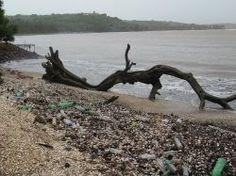 Comment la pollution plastique des océans se transforme en protection solaire