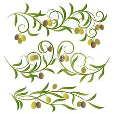 Olive branches . Royalty Free Stock Vector Art Illustration