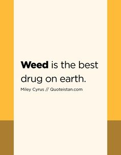 Weed is the best drug on earth.Miley Cyrus