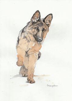 Серия моих рисунков животных. Техника - карандаш и чёрный чай. Gnievyshev, арт, творчество, рисунок, длиннопост, собака