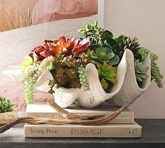 Faux Clam Succulent #potterybarn