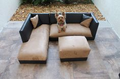 Pawesome pet products on pinterest dog beds dog food for Cat chaise lounge uk