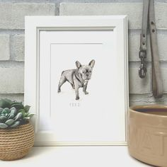A beautiful illustration of your beloved pet, using pen, inks and watercolours. Made to order and drawn from a photo you supply. Personalized Gifts, How To Draw Hands, Watercolor, Pets, Hand Drawn, Illustrations, Pen And Wash, Watercolor Painting, Customized Gifts