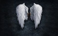 Angel Wings wallpapers and images download wallpapers, pictures