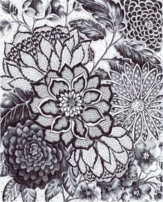 Hey, I found this really awesome Etsy listing at http://www.etsy.com/listing/122453097/original-ink-drawing-black-lace-black