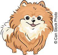 Pomeranian - Illustration Featuring a Pomeranian