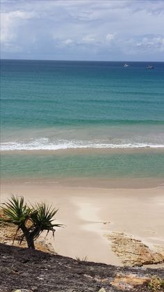 Adder rock, Point Lookout Point Lookout, Stradbroke Island, Beaches, Australia, Rock, Water, Outdoor, Water Water, Stone