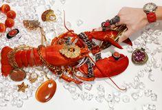 Michael Baumgarten still life lobster Jewelry Photography, Still Life Photography, Fashion Photography, Product Photography, Photo Jewelry, Fine Jewelry, Jewelry Box, Lobster Fest, Baumgarten