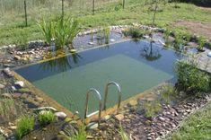 Autoconstruction piscine bio en Auvergne - En livradois -Forez - juillet 2008 ! - Vous êtes fier de votre piscine