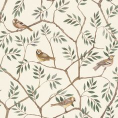 August Grove This wallpaper roll with bright colour palette enhances pretty meadow flowers alongside beautiful bird scenes giving a feeling of wellbeing in the home and a renewed sense of connection to the world around us.