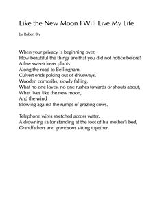 Robert Bly, an introduction to the poetry