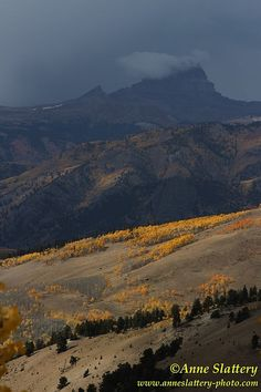 Uncompahgre Peak from Slumgullion Pass, Colorado.    IMG_C_06117 by The Bright Edge - Photography by Anne Slattery, via Flickr.