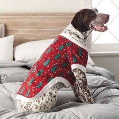 01404f4cc dog pajamas - Google Search Christmas Pjs, Christmas Animals, Christmas  Shopping, Family Pjs
