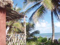 Thatched Cabanas   Ak'bol Yoga Retreat & Eco Resort, San Pedro Town, Ambergris Caye, Belize