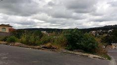 Prefeitura de S. A. do Monte multará donos de lotes sujos a partir de maio.>http://goo.gl/ZfyRMa